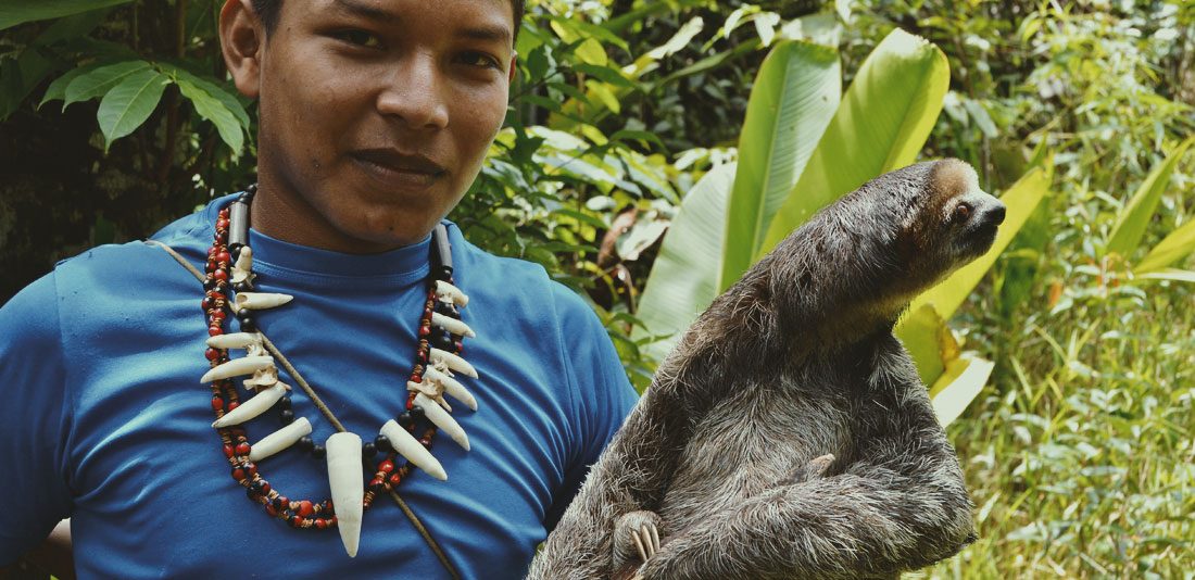 fauna-amazonas-1